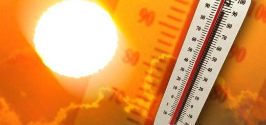 Come combattere la calura estiva
