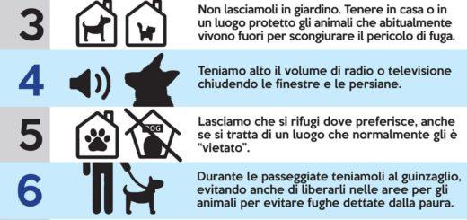 decalogo per proteggere gli animali dai botti di capodanno