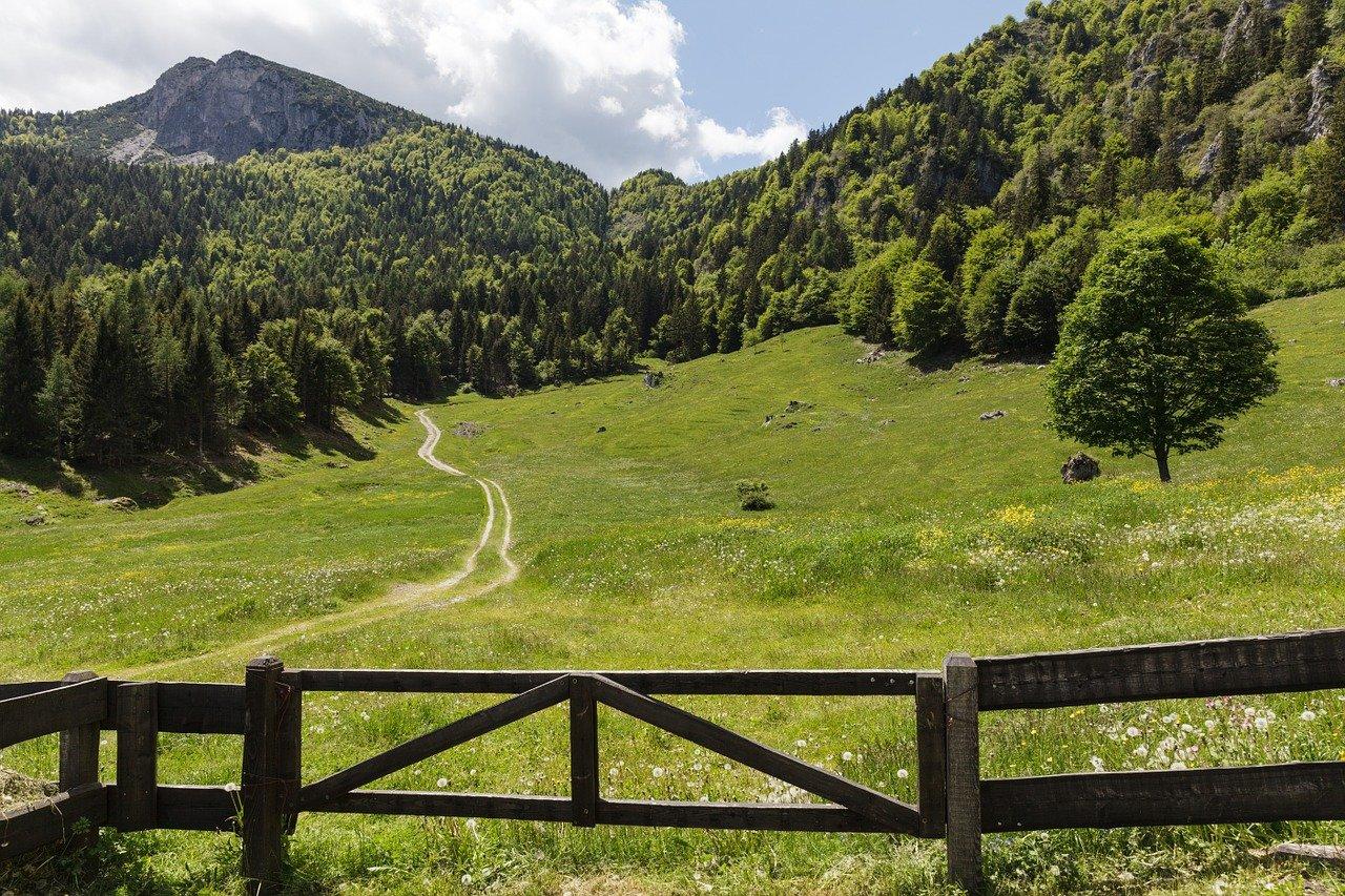 trento, garda mountains, alm