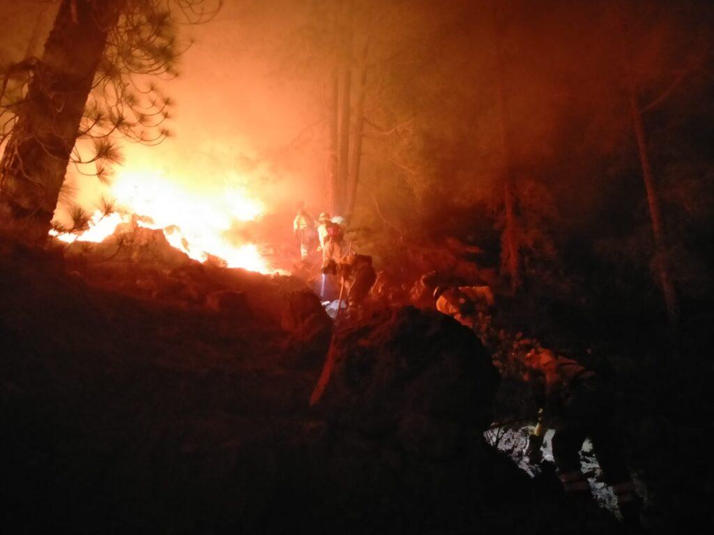 Incendio a Tenerife più di 3000 ettari interessati dalle fiamme