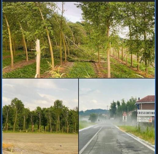 Foto dal Crescentino (provincia di Vercelli) di Manu dal gruppo telegram